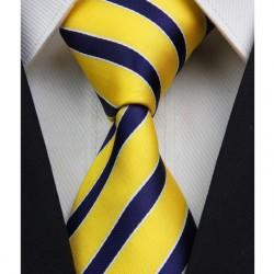 Hedvábná kravata NT0064