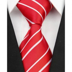 Hedvábná kravata NT0065