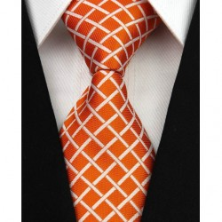 Hedvábná kravata NT0016